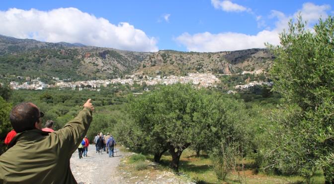 Explore Kritsa, Crete